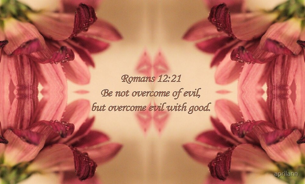 Overcome Evil With Good by aprilann