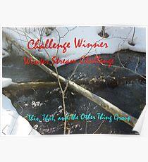 Challenge Winner - Winter Streams Poster