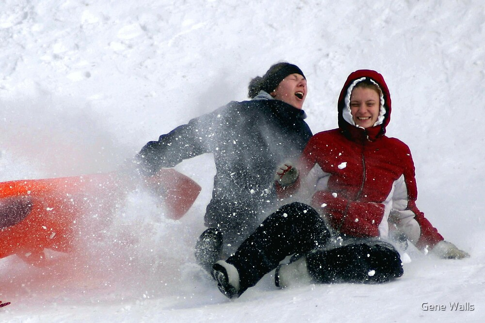 SNOW WIPEOUT! by Gene Walls