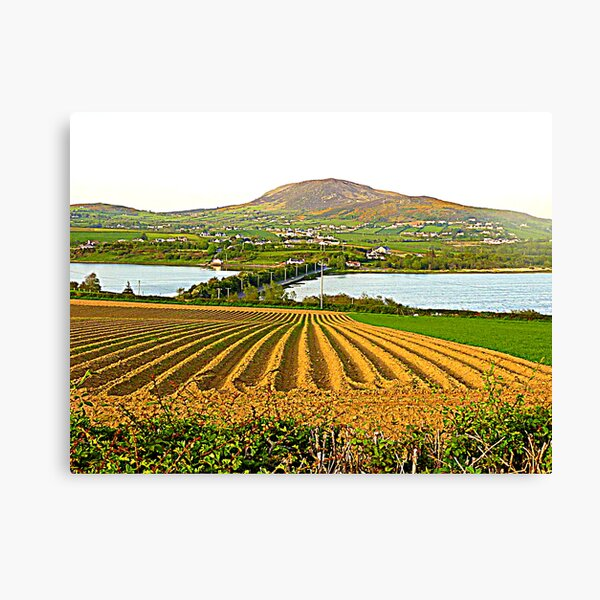 The Causeway To Inch Island Canvas Print