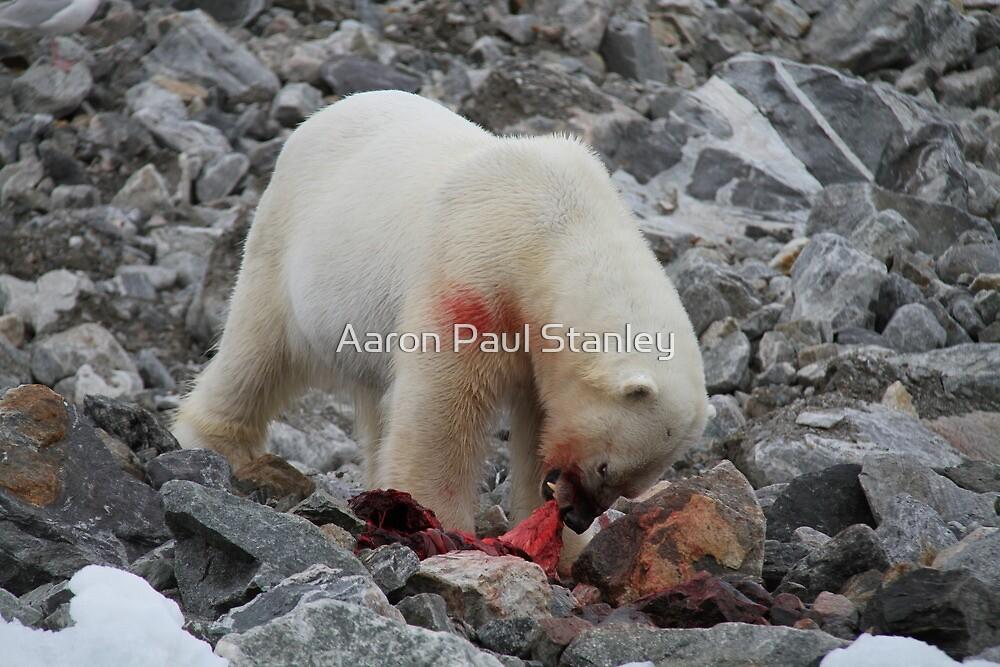 Polar Bear Dinner 3 by Aaron Paul Stanley