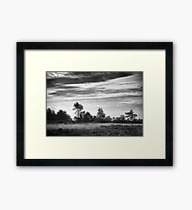 Ashdown Forest in Black and White Framed Print