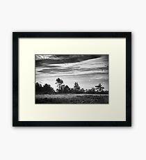 Ashdown Forest in Black and White Framed Print