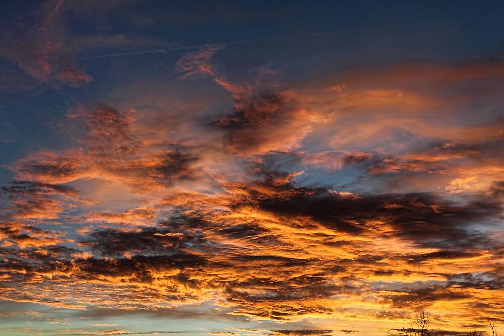 Cloud 20130111-62 by Carolyn  Fletcher