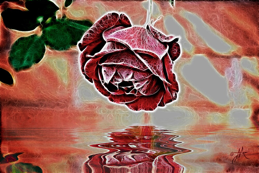 A Rose of a Different Kind by Pat Moore