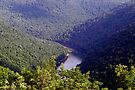 Cheat River Valley by Gene Walls