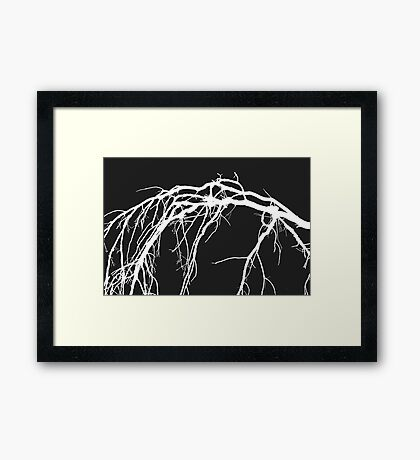Nature's Modern Canvas  Framed Print