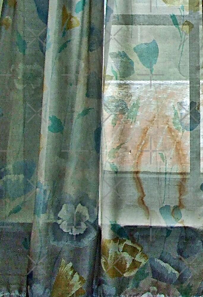 60's Curtain by BavosiPhotoArt