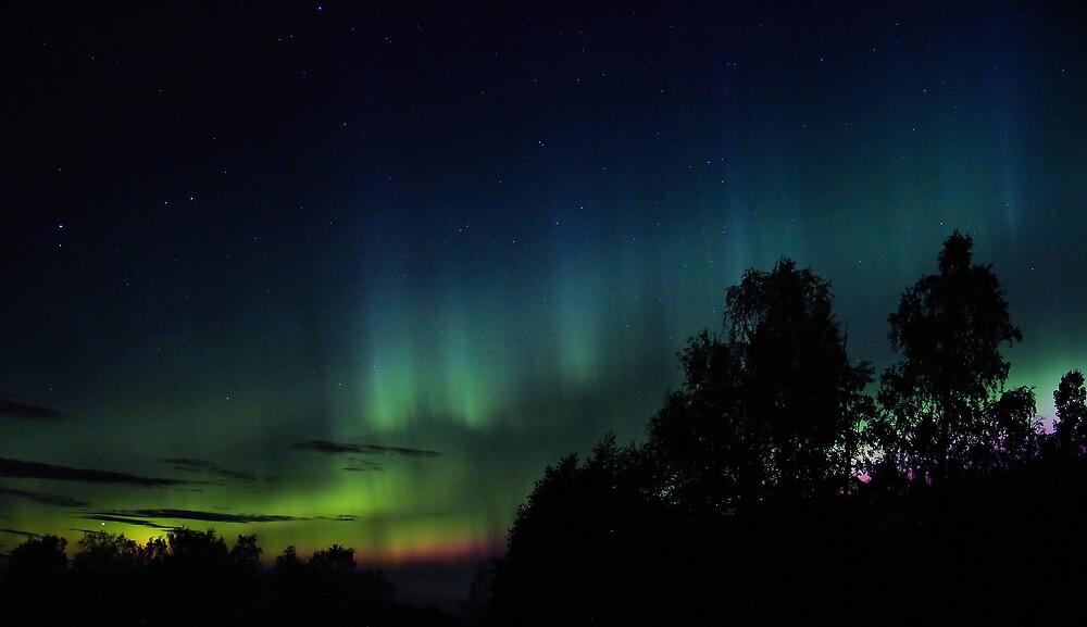 Northern Lights by Daniel G.