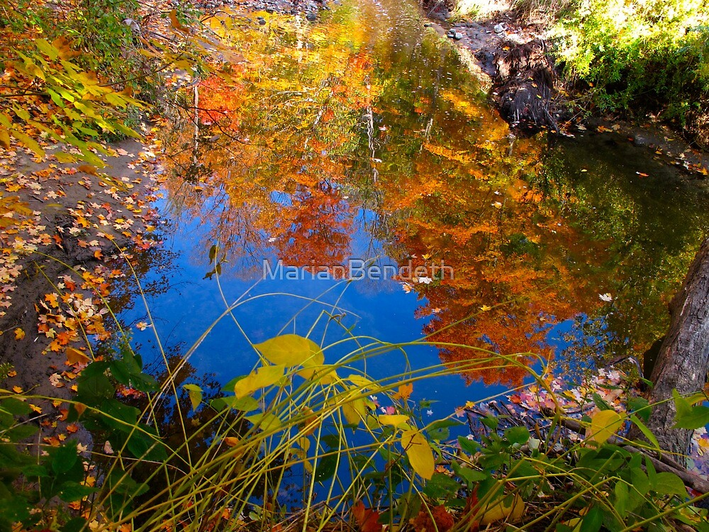 Autumn through the looking glass by MarianBendeth