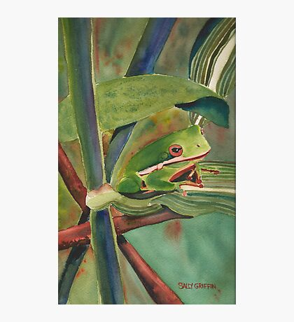Tell Me a Tale, Tree Frog Photographic Print