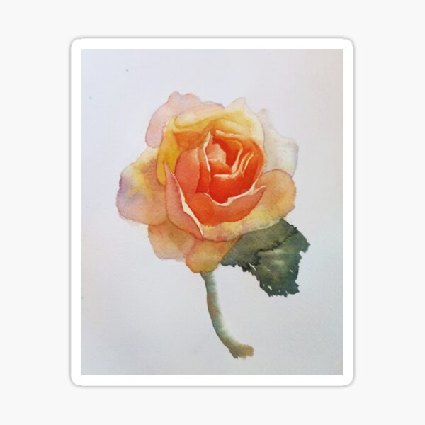 Watercolor Rose flower botanical yellow orange painting Sticker