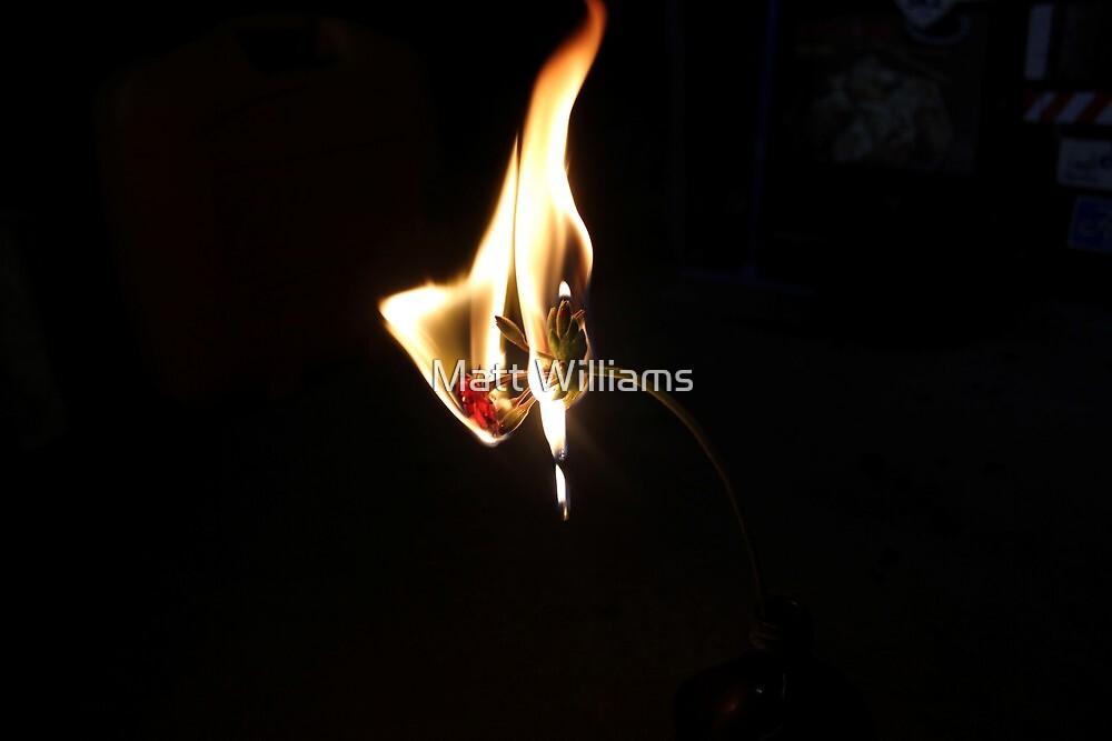 Fire by Matt Williams
