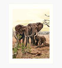 Family bond Art Print