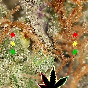 Cannabis Macro - iPhone Case by GrassPass