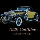 1929 Cadillac Convertible Coupe by DaveKoontz