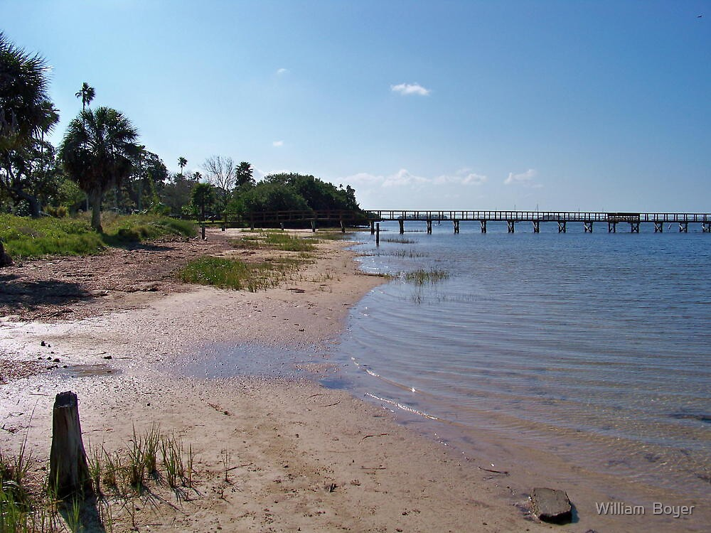 Dock on the beach by William  Boyer