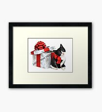 Happy New Year 2016 cat Framed Print