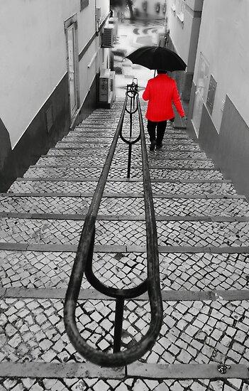 Half way down. by Paul Pasco