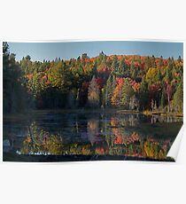 Algonquin Park, Northern Ontario Poster