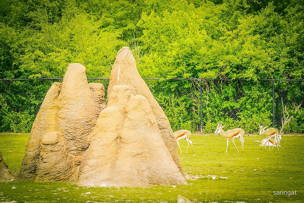 termite hills by sanngat