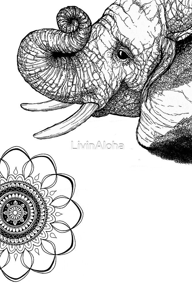 Bohemian Elephant on White by LivinAloha