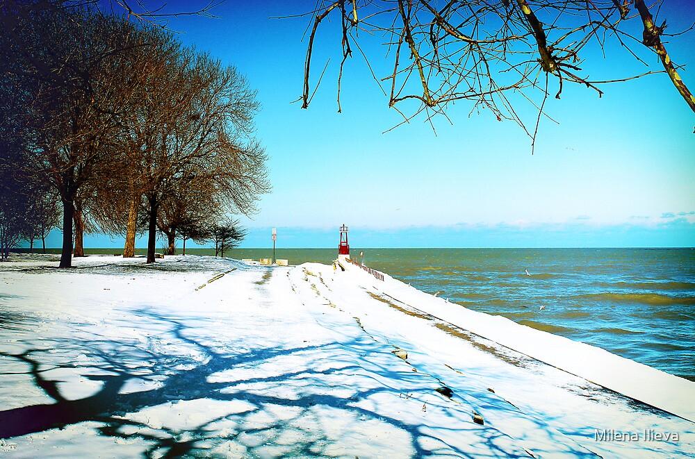 the Art of Winter by Milena Ilieva