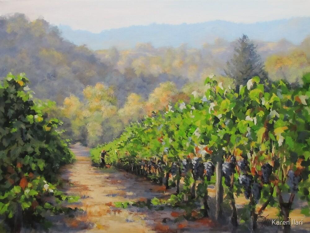 Harvest Morning by Karen Ilari