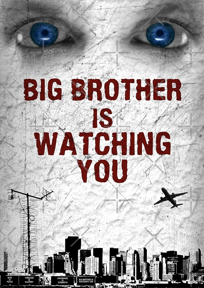 BIG BROTHER IS WATCHING YOU by VenusOak