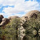 The Lake (someplace in AZ) by Penny Fawver
