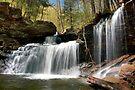 New Beginnings At R. B. Ricketts Waterfall by Gene Walls