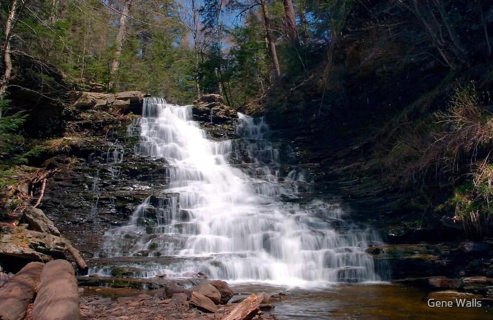 May Sunshine on F. L. Ricketts Waterfall by Gene Walls