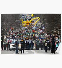 March for Life - Washington D.C. MMXIII  Plate # VII Poster