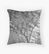 Trees with moon -  Ottawa National Wildlife Refuge Throw Pillow