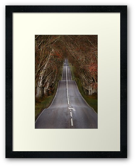 The Long Road by Patricia Jacobs DPAGB LRPS BPE4