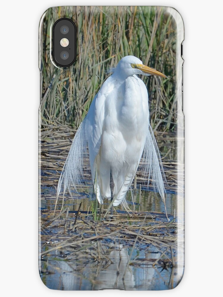 Queen of the Salt Marsh Iphone Case by TJ Baccari Photography