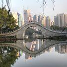 Unpredictable China by cishvilli