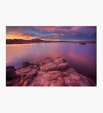 Willow Lake Pink Blue Photographic Print