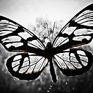 Mariposas tres #3 by Veroniquecz