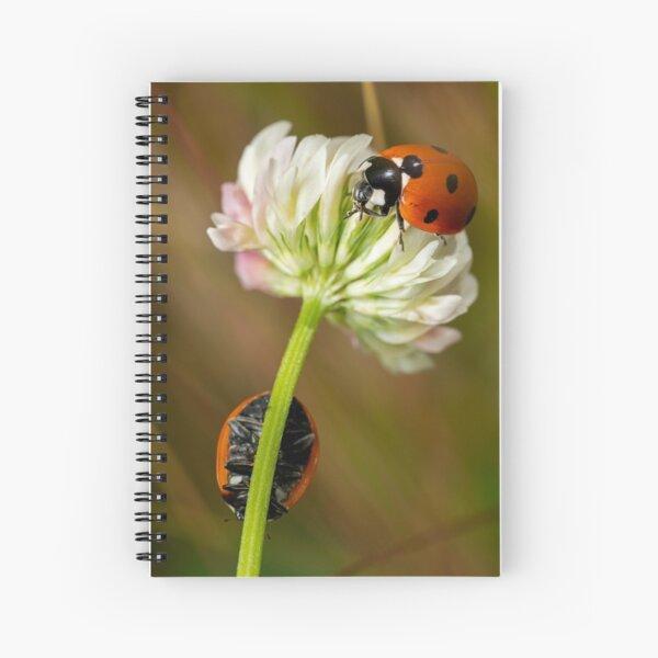 Ladybugs on Woollyhead Clover Spiral Notebook