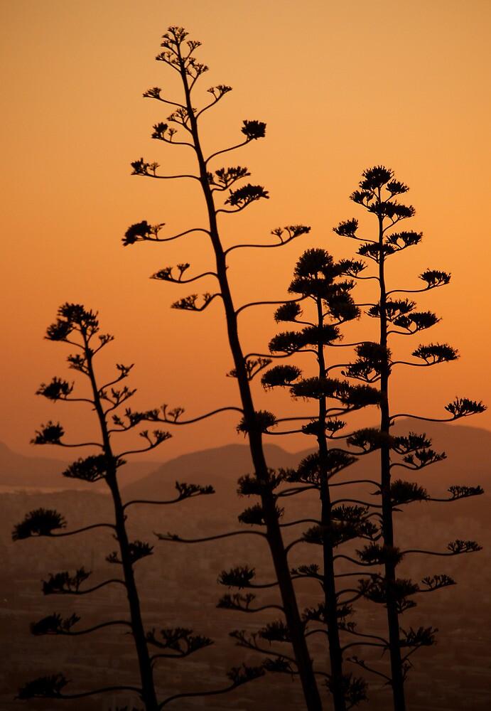 Mount Lycabettus Sunset by UniSoul