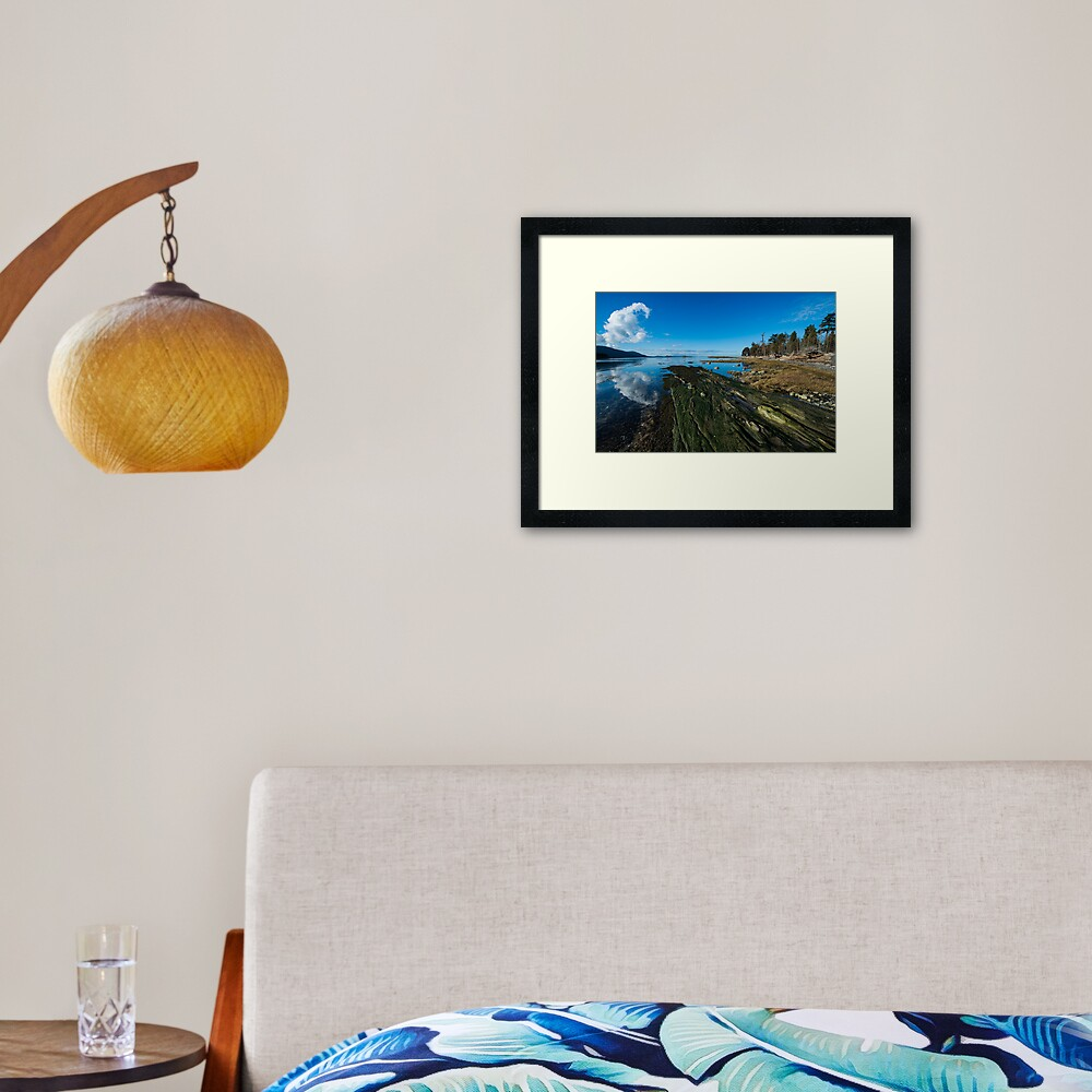 Cabbage Island Marine Park: Afternoon in January Framed Art Print
