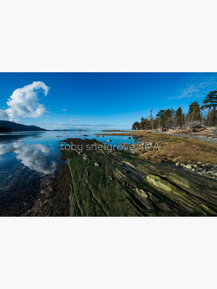 Cabbage Island Marine Park: Afternoon in January by tobysnelgrove