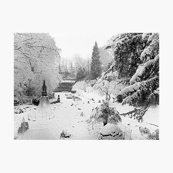 Secret Garden In The Snow Photographic Print