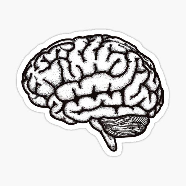 Anatomical brain black and white Sticker