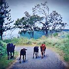 Home - The graze period is over (please see description) by Kanages Ramesh