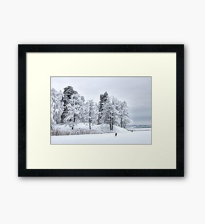 Frosted freedom Framed Print