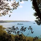 Plymouth Sound by Hannah Sterry