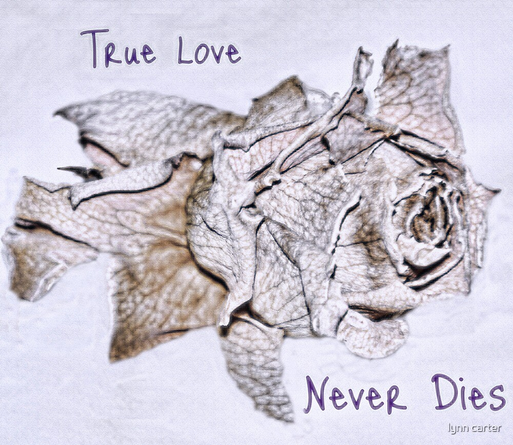 True Love Never Dies by lynn carter