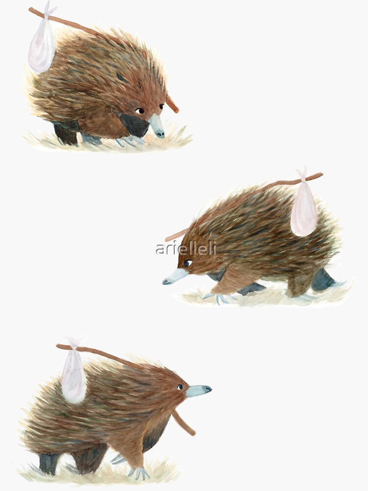 A Travelling Echidna - A Giant Australian Version of the Hedgehog by arielleli